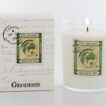 Geodesis Balsam Scented Candle - Design Essentials