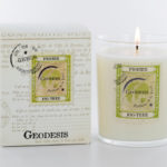 Geodesis Fig Tree Scented Candle - Design Essentials