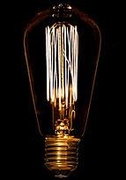 Vintage Squirrel Cage Bulb from design essentials in Saffron Walden