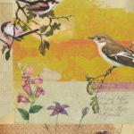 Michelle Thompson Art Birds