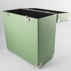 Vinyl Record Case in Mint Green