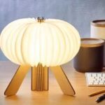 R space lamp maple open warm light design Essentials gingko