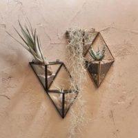 Karana Small Wall Planter Display Antique Brass Antique Black Nkuku Design Essentials