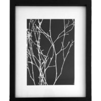 Original Unique Botanical Branches Photogram Victoria Gray Design Essentials