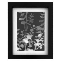 Original Unique Botanical Eucalyptus Small Lino Print Victoria Gray Design Essentials
