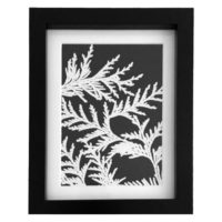 Original Unique Botanical Fern Photogram Victoria Gray Design Essentials