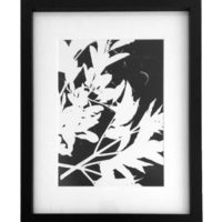 Original Unique Botanical Foliage Photogram Victoria Gray Design Essentials