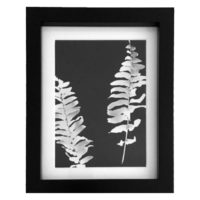 Original Unique Botanical Leaves Photogram Victoria Gray Design Essentials