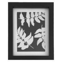 Original Unique Botanical Trio Of Leaves Photogram Victoria Gray Design Essentials